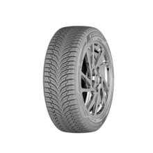 All Season All Climate Reifen 225 / 45R17